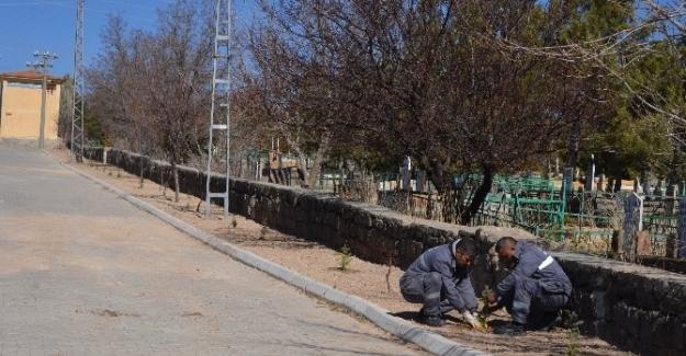 Bünyan Belediyesi'nden Peyzaj Ve Yeşillendirme Çalışması