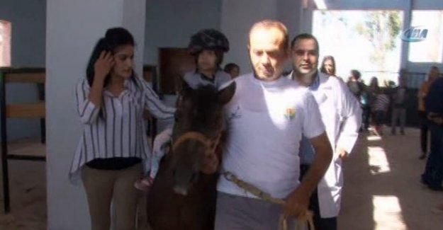 FETÖ'nün atlarıyla engellilere terapi