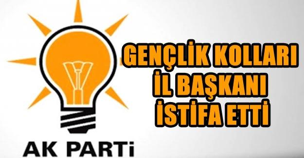 AK Parti İl Gençlik Kolları Başkanı istifa etti