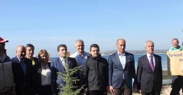 'Turkcell Gelibolu Maratonu'nda barış için fidan dikildi