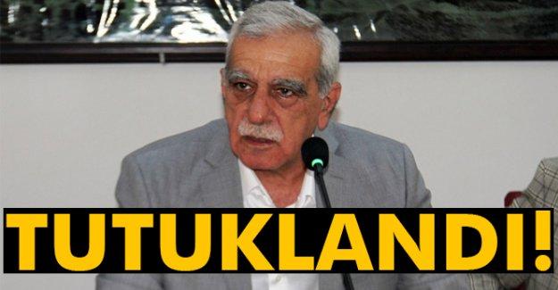 Ahmet Türk tutuklandı!