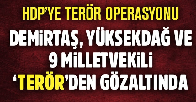 Demirtaş, Yüksekdağ ve 9 HDP'li vekil gözaltına alındı