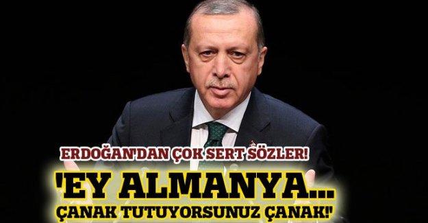 Erdoğan, Almanya'yı topa tuttu