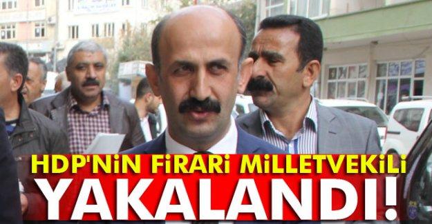 HDP'nin firari milletvekili gözaltına alındı
