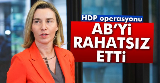 HDP'ye yapılan operasyon AB'yi rahatsız etti