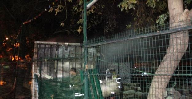 İzmir Enternasyonal Fuarında korkutan yangın