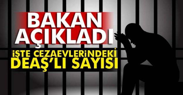 Bakan açıkladı: İşte cezaevlerindeki DEAŞ'lı sayısı
