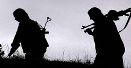 3 PKK'lı teslim oldu