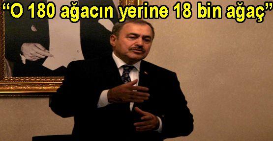 Bakan Eroğlu,CHP'yi eleştirdi