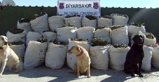 Diyarbakır'da 16 ton esrar ele geçirildi
