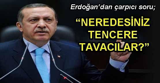 Erdoğan,Yalova'daki ağaç katliamını hedef aldı