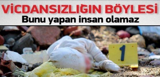 Mersin'de Vahşet, Bunu Yapan İnsan Olamaz