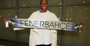 Fenerbahçe#039;nin yeni transferi...
