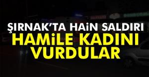 Şırnak'ta hain saldırı! Hamile kadını vurdular