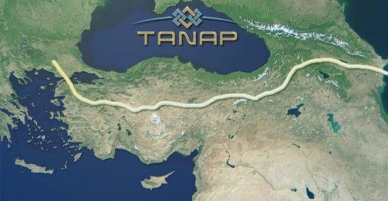 TANAP Türk firmaların